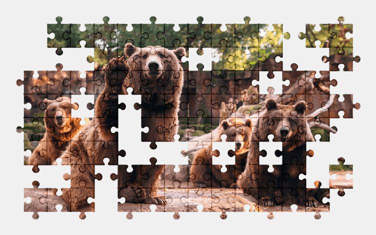 Пазлы Онлайн Медведи