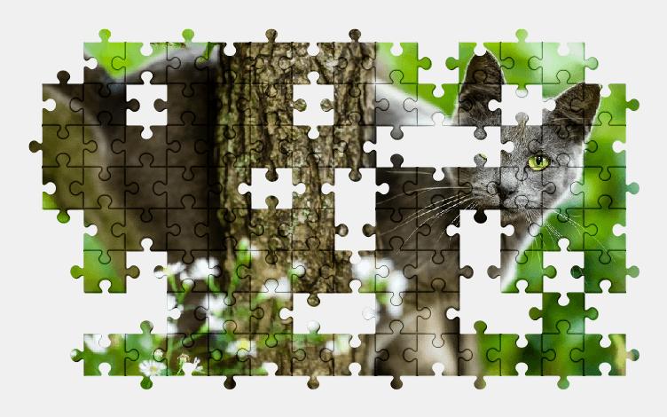 Пазлы Онлайн Дерево, Кот