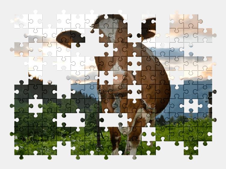 Пазлы Онлайн Корова