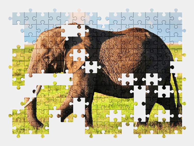 Пазлы Онлайн Слон