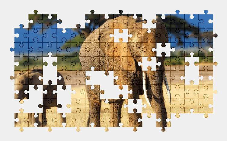 Пазлы Онлайн Слоны