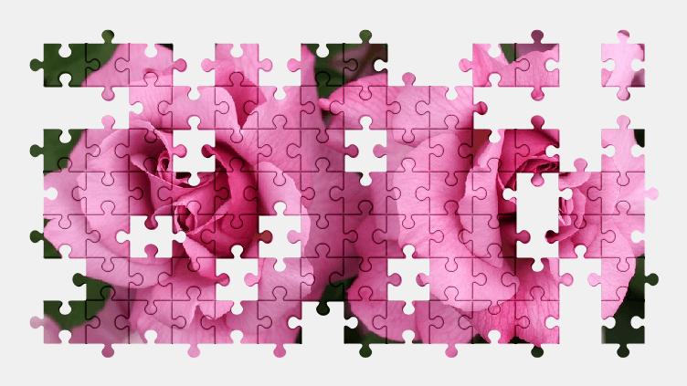 Пазлы Онлайн Красивые Розовые Розы