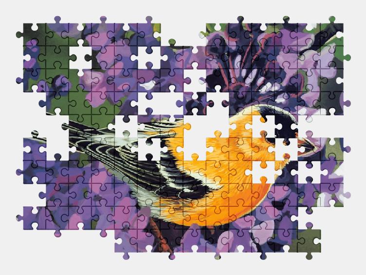 Пазлы Онлайн Птица